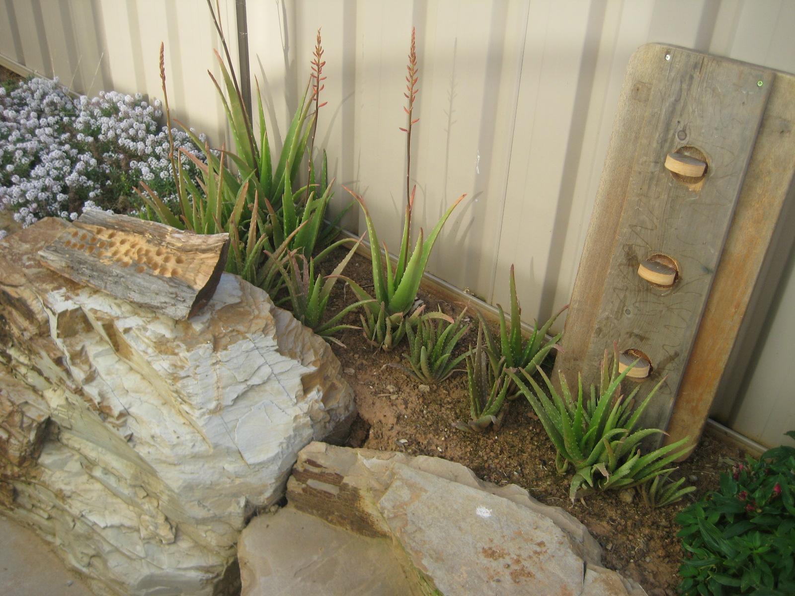 Today\'s organising bliss: Garden art - Extra Organised