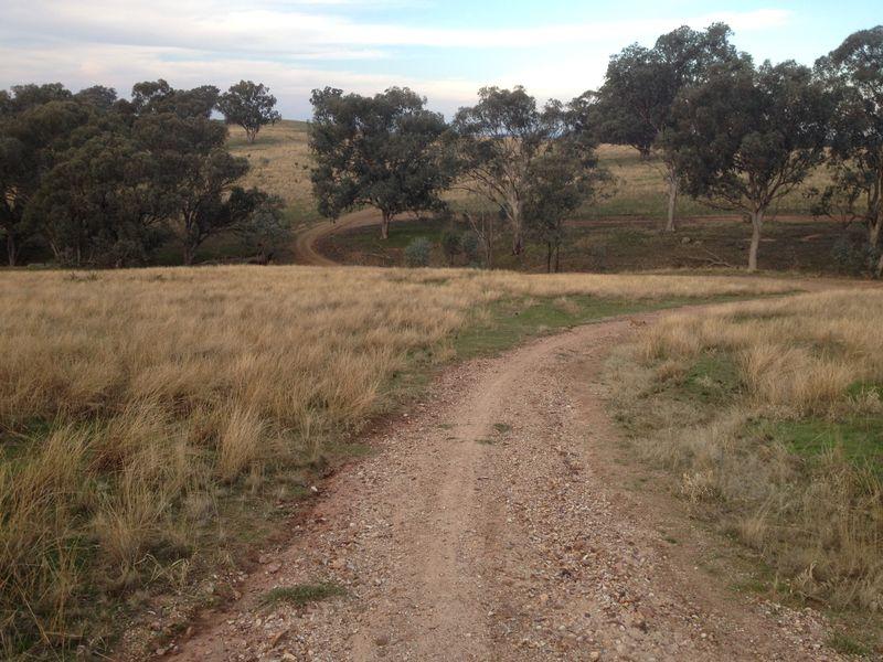 Hiking_210516